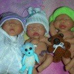 mes bébés 2011