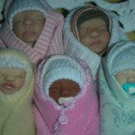 bébés 2012